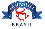 LOGO-BVA-BRASIL